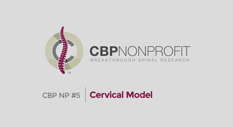 CBP NP #5: Cervical Model